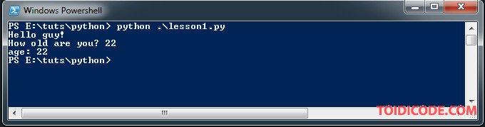 input trong Python
